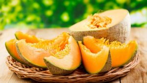 melon-fruit-de-saison