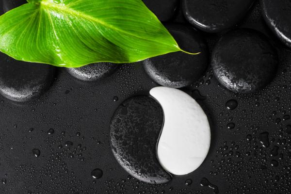 Yin et Yang en noir et blanc avec une feuille verte